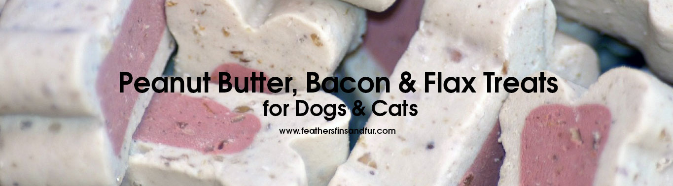 peanut-butter-bacon-flax-treats-for-dogs-cats